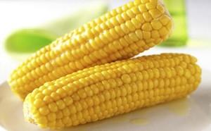 采用电动石磨磨制的玉米面,味道更好。